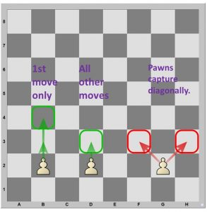 Pawns can move one or two squares on their first move.